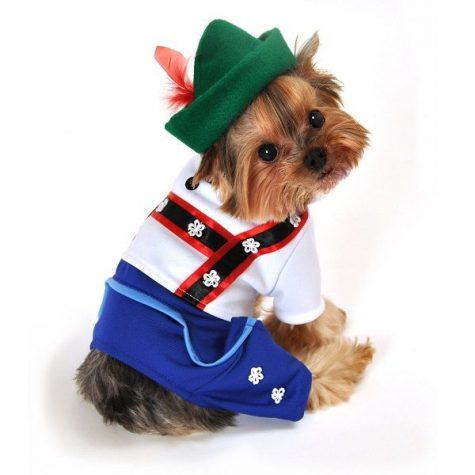 Barktoberfest: Dogs, Lederhosen, and Dogs in Lederhosen