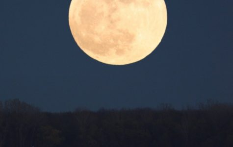 Was The Supermoon Really That Super?