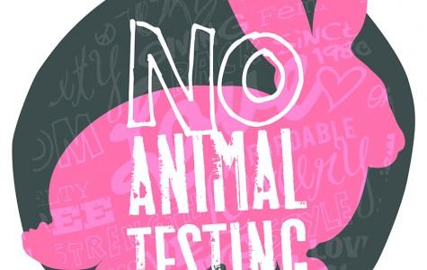 Animal Testing 101: Types of Testing