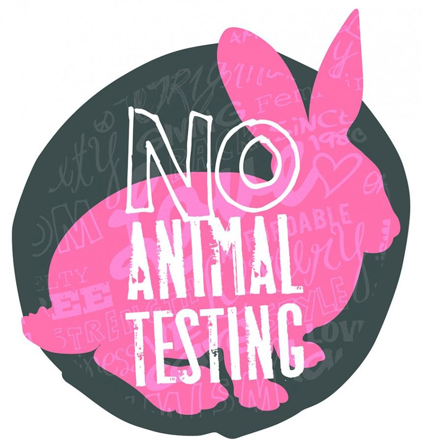an argument against animals being used as experimental subjects - animal experimentation, also known as animal research and animal testing, is an experimental procedure in which animals are used within academic, scientific, research, biological and commercial establishments.