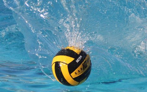 Pitman Water Polo Swimming to Victory