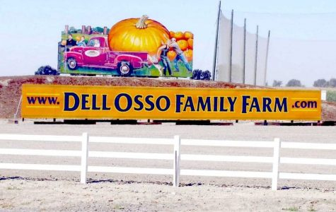 The Dell'Osso Pumpkin Maze