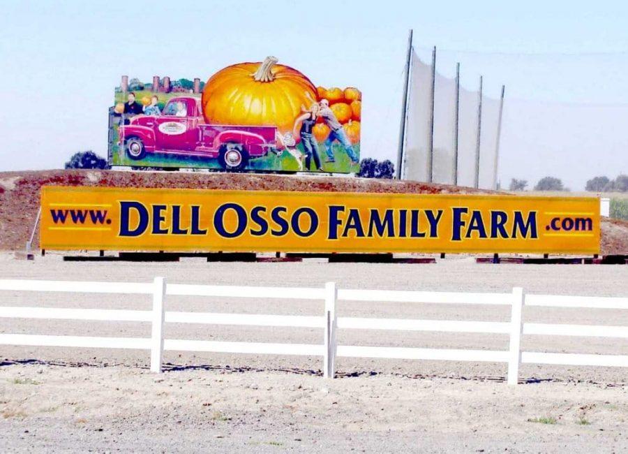 The+Dell%27Osso+Pumpkin+Maze