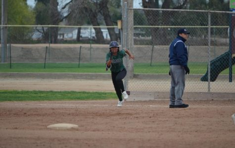 Pitman Softball is Looking to Hit One Out of the Park!