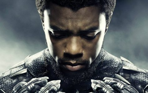 Black Panther Breaks Cinematic Boundaries