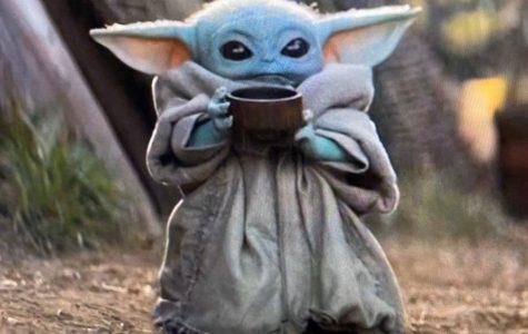 Baby Yoda Craze