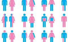 The Gender Debate
